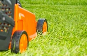 Best Overall Cordless Lawn Mower